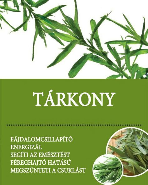 féreghajtó gyógynövények)