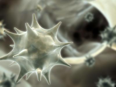 papilloma vírus és daganatok)