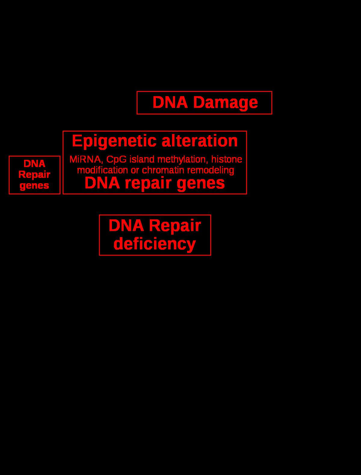hasnyálmirigyrák genetika)