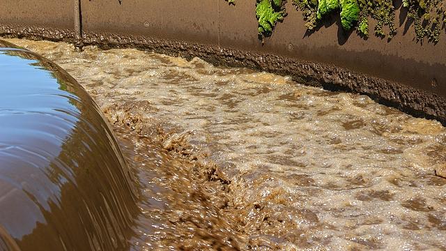 lapos folyó terjedése férgek megelőzése férgek gyermekeknél