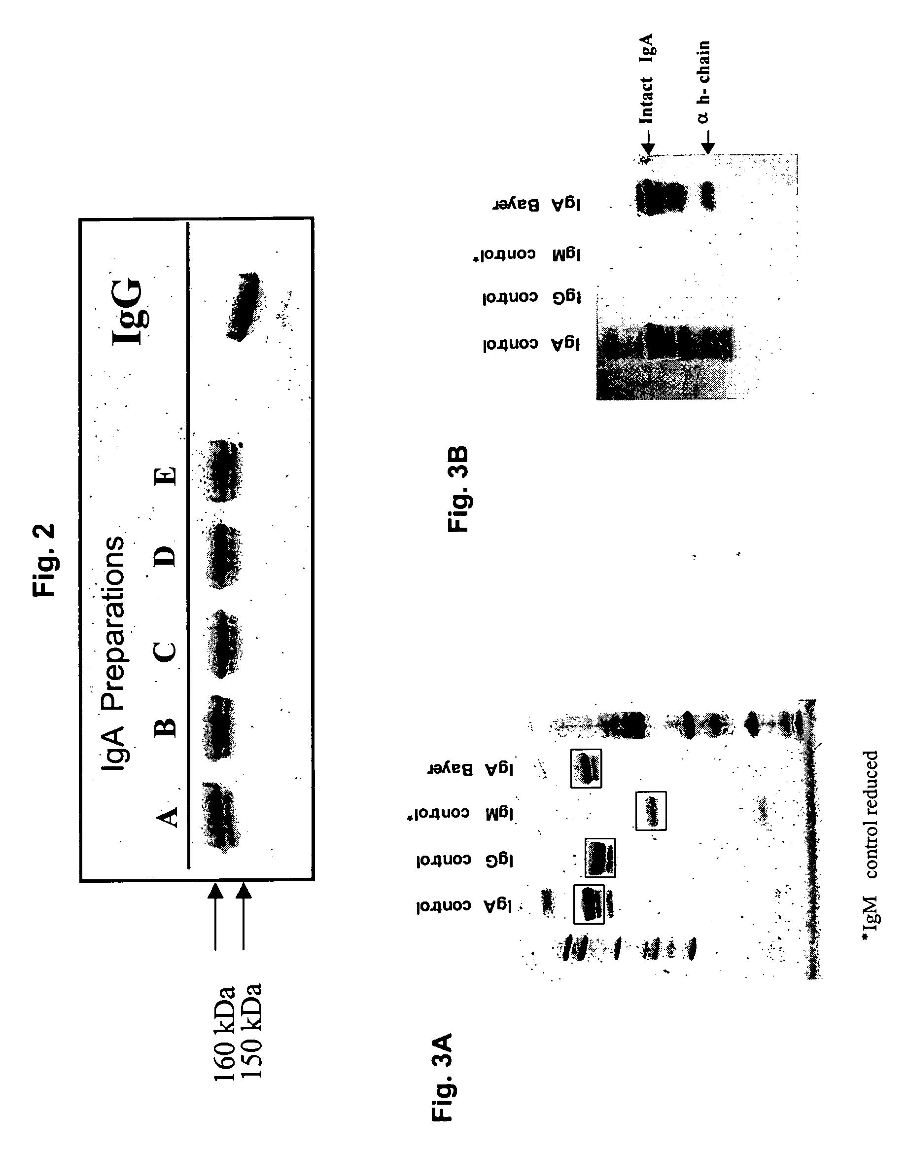 acularis condyloma