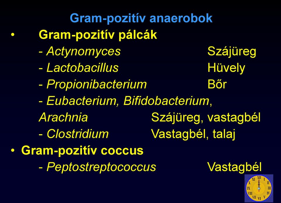gram-pozitív baktériumok tünetei)