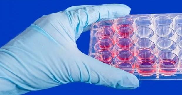szemölcsök hogyan kell gyorsan kezelni hatékony és olcsó gyógyszer a férgek ellen