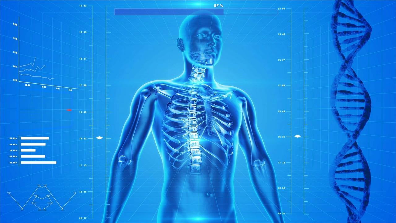 ahol eltévedek az emberi testben