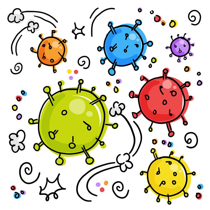 baktériumok és vírusok)