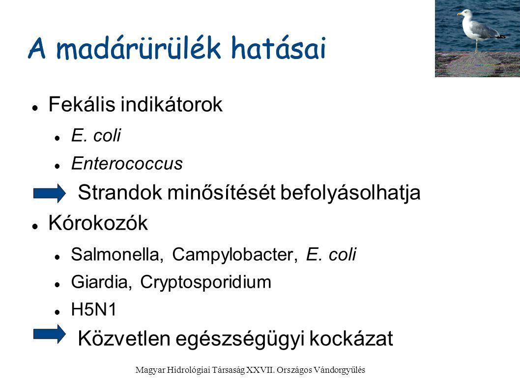 a giardia zoonotikus potenciálja)