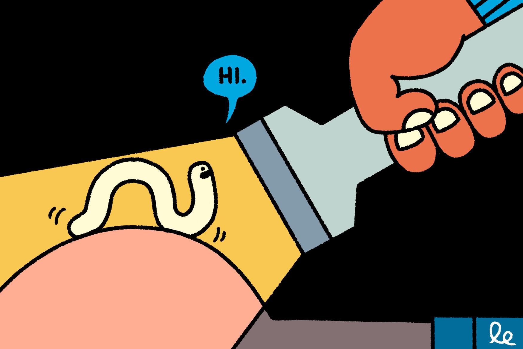pinworms évben paraziták tablettákban