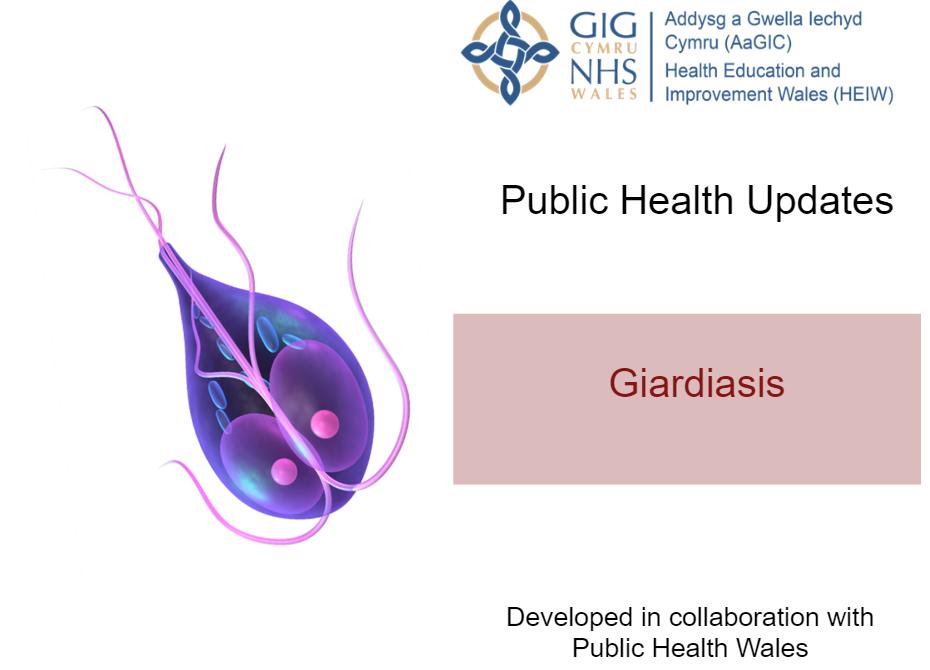 giardiasis uk prevalenciája)