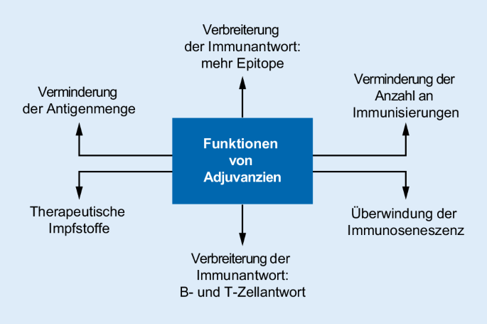 hpv impfung erwachsene módon