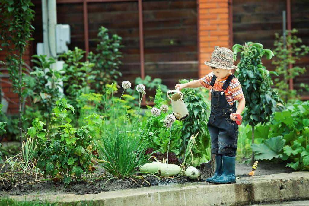 kertészkedés az óvodában)