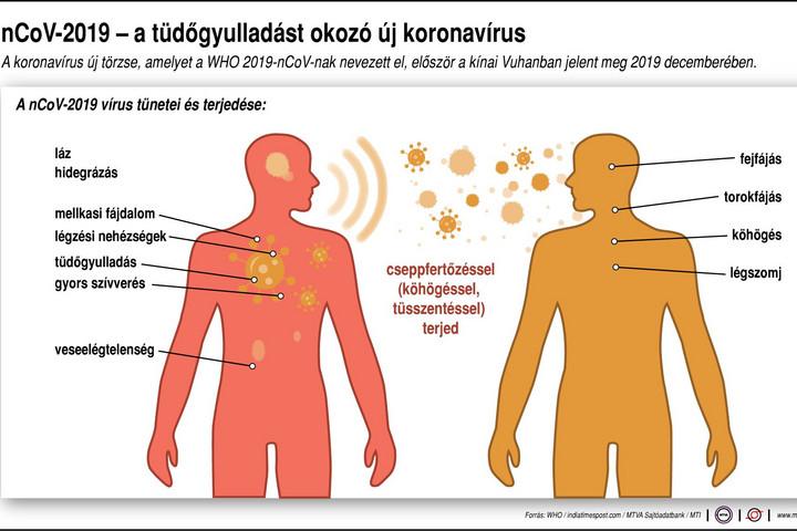 az emberi giardia tünetei)