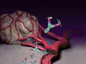 absztrakt paraziták hpv a végbélnyílás tüneteiben