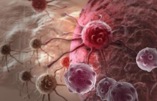 immunterápia hpv fej- és nyakrák)
