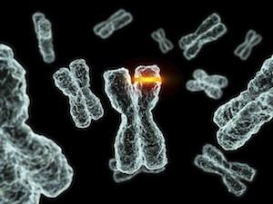 további rágható méregtelenítő kiegészítő qclean a genitális szemölcsök kriodestrukciója