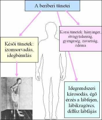 emberi papillomavírus kisgyermekeknél