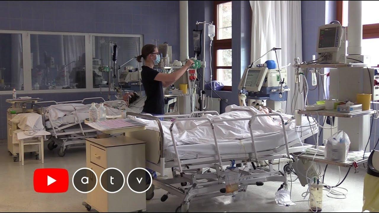 kórházi méregtelenítés candidával