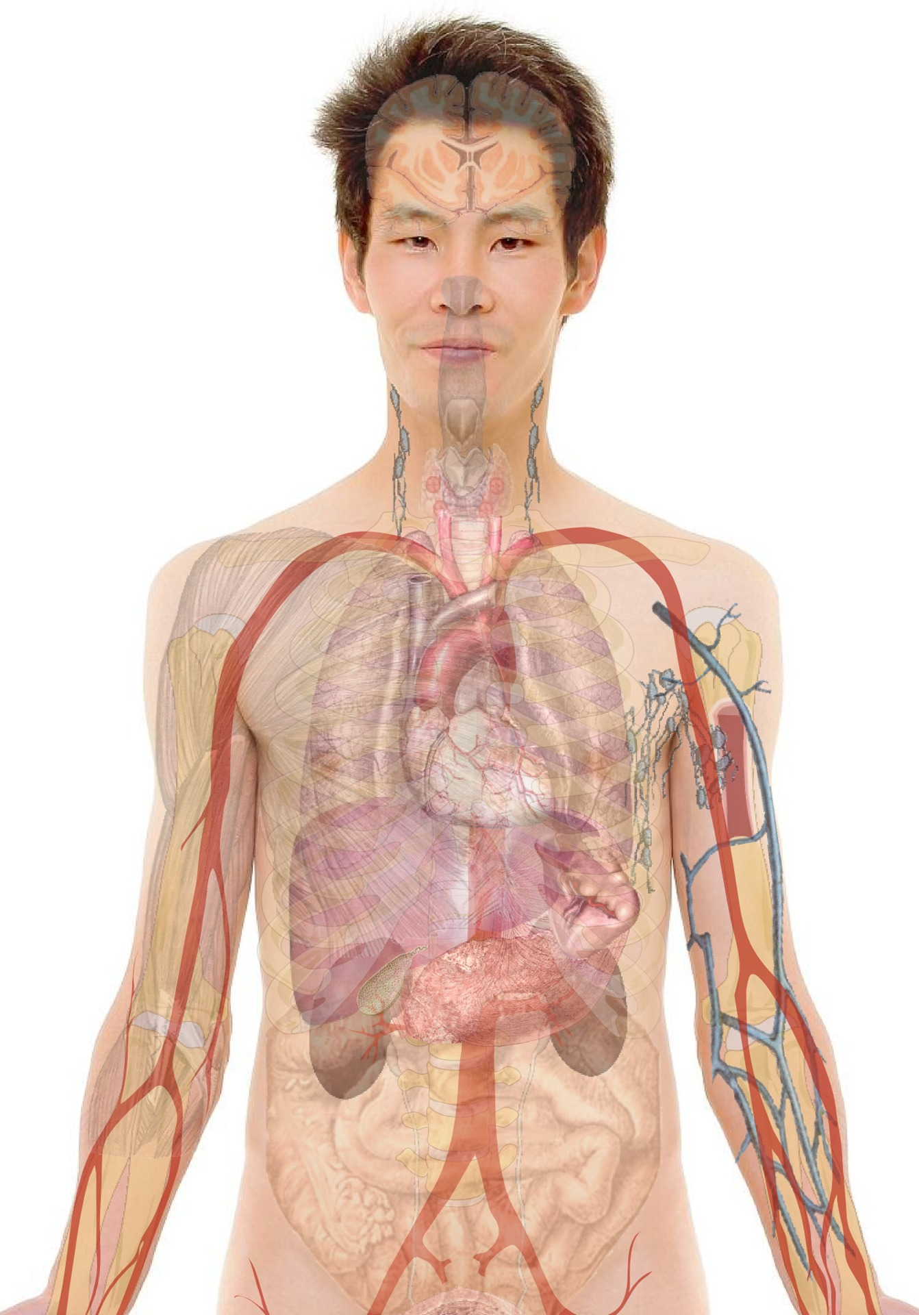 paraziták és crijevima covjeka tünetek