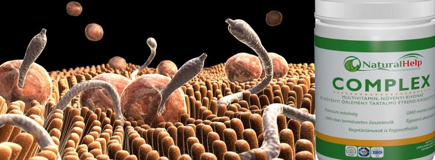 féreg tinktúra hogyan lehet megszabadulni a parazitáktól)