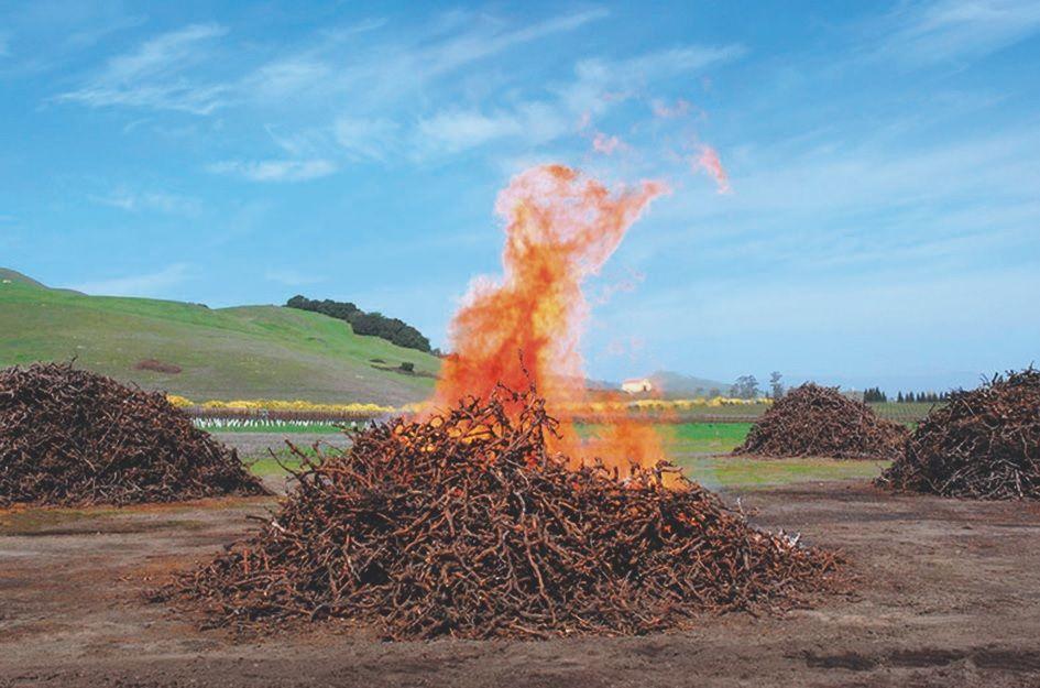 VÍZÖNELLÁTÓ - Komposztkészítés emberi ürülékből