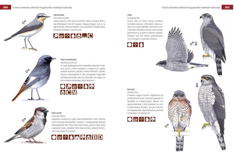 külső élősködők madaraknál
